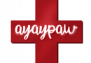 A Yay Paw mobile application designed to provide first aid services